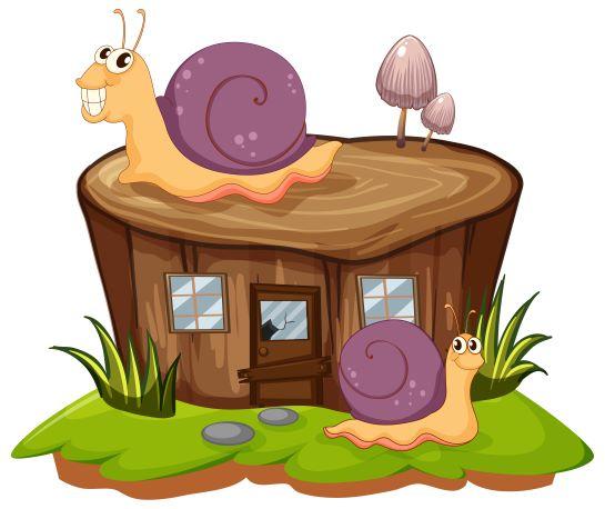 mucyna-ślimaka